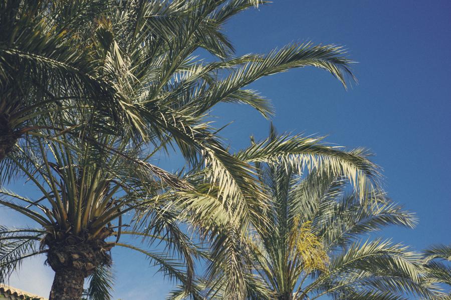 Grand Canaria 7
